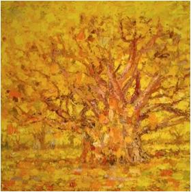 carte-voeux-arbre