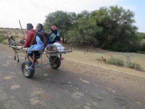 Transport non polluant !