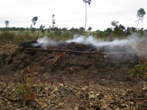 Moramanga - grande maîtrise de carbonisation