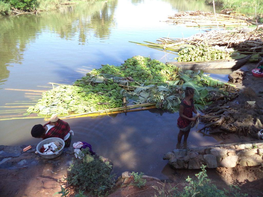 Récolte et marchés sur l'eau