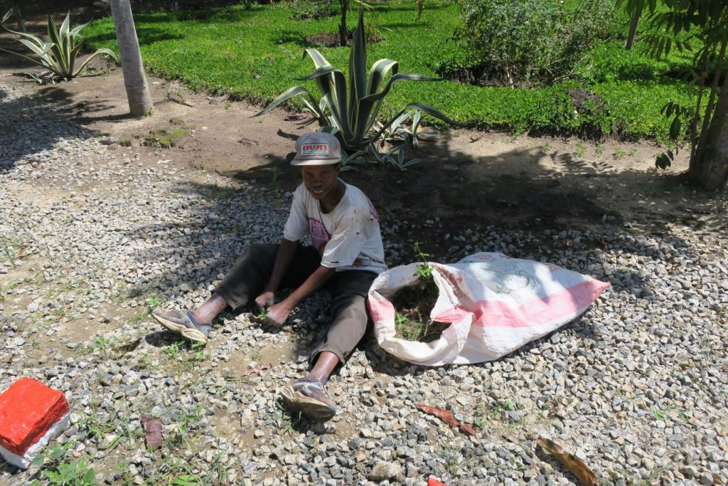 Moramanga pas d'hierbicide